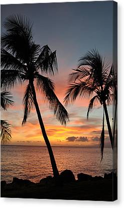 Maui Sunset Palms Canvas Print by Kelly Wade