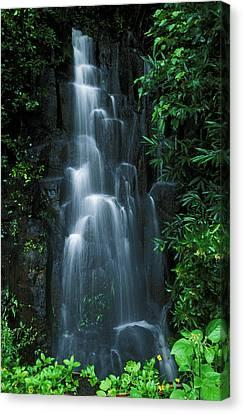 Hawaiian Rock Art Canvas Print - Maui Waterfall by Ron Dahlquist - Printscapes