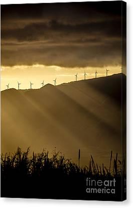Canvas Print - Maui Wind Farm Sunset by Dustin K Ryan