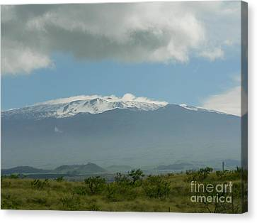 Mauna Kea Canvas Print by Don Lindemann