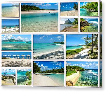 Deer On Beach Canvas Print - Mauritius Tropical Beaches Collage by Benny Marty