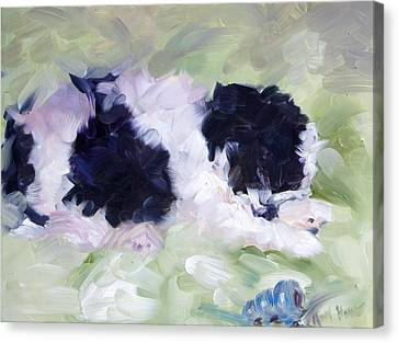 Sleeping Maltese Canvas Print - Max Sleeping by Mary Haas