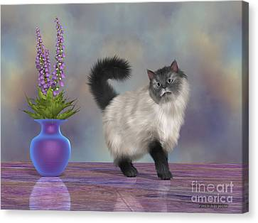 Max The House Cat Canvas Print by Corey Ford