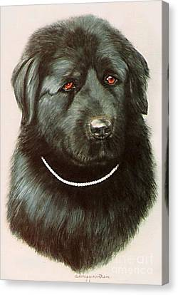 Canvas Print featuring the painting Maximillan And His Diamond Collar. by DiDi Higginbotham