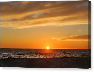 Southwest Florida Sunset Canvas Print - Maxine Barritt Park Sunset  -  Maxbar560 by Frank J Benz