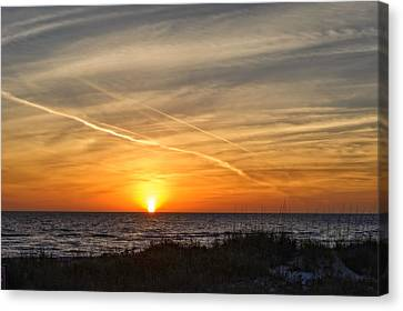 Southwest Florida Sunset Canvas Print - Maxine Barritt Park Sunset   -  Maxbarr874 by Frank J Benz