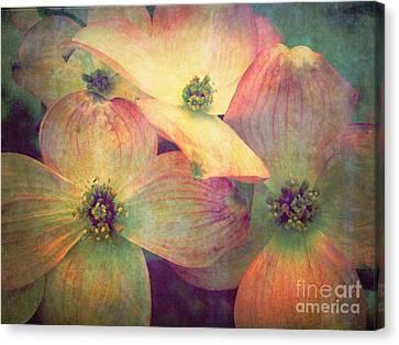 Penticton Canvas Print - May 10 2010 by Tara Turner