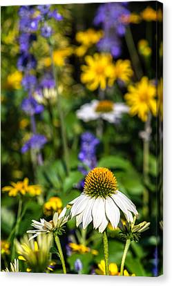Canvas Print featuring the photograph May Flowers by Steven Sparks