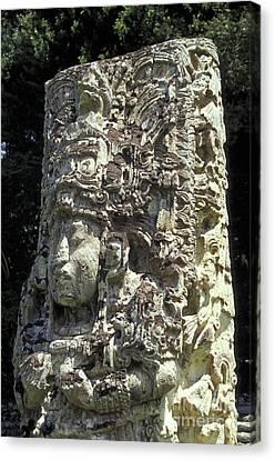 Maya Stela Copan Honduras Canvas Print by John  Mitchell