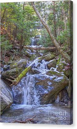 Mcconnells Mill Rock Falls Winter  Canvas Print