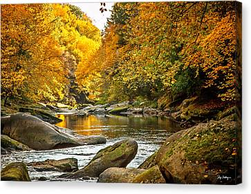 Mcconnell's Mill State Park Canvas Print by Skip Tribby