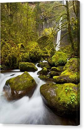 Beautiful Creek Canvas Print - Mccord Creek Below Elowah Falls by Thorsten Scheuermann