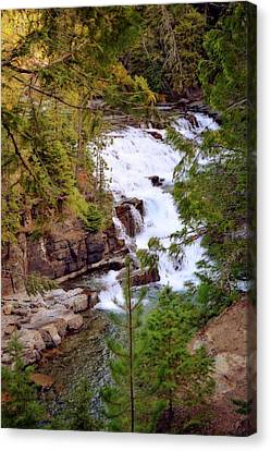 Mcdonald Creek 4 Canvas Print by Marty Koch