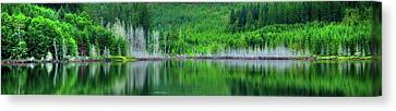Mcguire Reservoir P Canvas Print by Jerry Sodorff