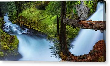 Canvas Print featuring the photograph Mckenzie River From Sahalie Falls by Cat Connor