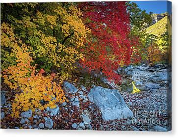 Mckittrick Autumn Canvas Print