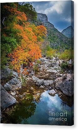 Mckittrick Canyon Canvas Print