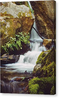 Canvas Print featuring the photograph Mcway Creek Falls 1 by Gary Brandes
