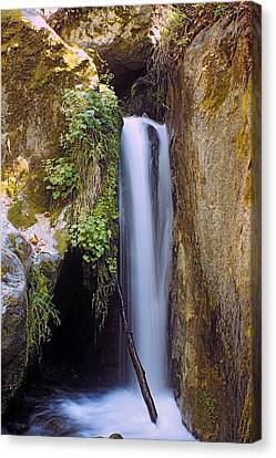Canvas Print featuring the photograph Mcway Creek Falls 2 by Gary Brandes