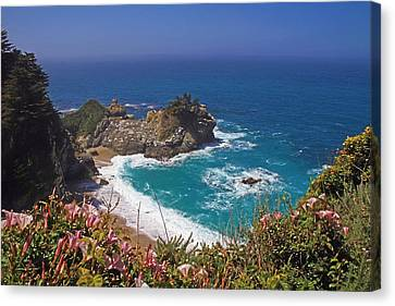 Mcway Falls  Canvas Print by Donna Kennedy