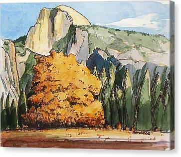 Meadow At Half Dome Canvas Print by Terry Banderas