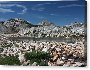 Medicine Bow Vista Canvas Print