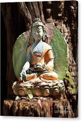 Canvas Print featuring the photograph Medicine Buddha With Offerings by Carol Lynn Coronios