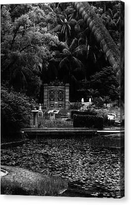 Medidation Garden Canvas Print by Amarildo Correa
