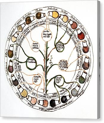 Medieval Urine Wheel Canvas Print by Sheila Terry