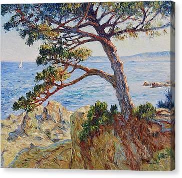 Mediterranean Sea Canvas Print by Pierre Van Dijk