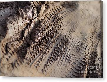 Medium Cu Motorcycle And Car Tracks In Mud Canvas Print