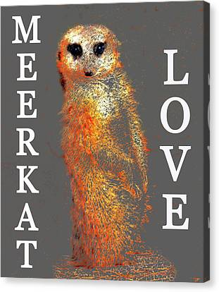 Meerkat Love Canvas Print by David Lee Thompson