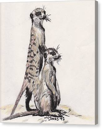 Meerkats Canvas Print by Marqueta Graham