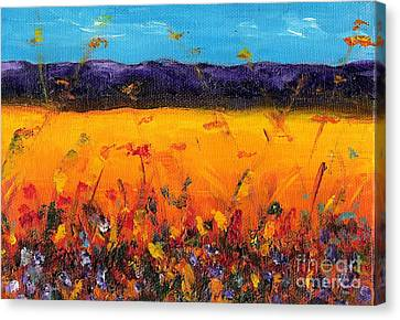 Melissa's Meadow Canvas Print by Frances Marino