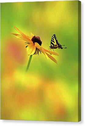 Mellow Yellow Canvas Print by John Poon