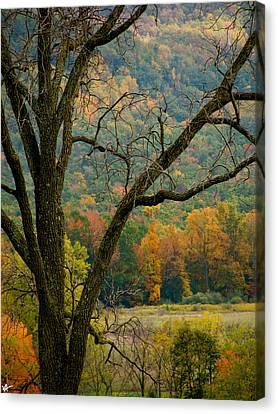Melody Of Autumn II Canvas Print by Debra     Vatalaro