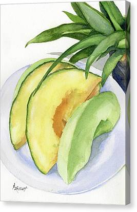 Cantaloupe Canvas Print - Melon Color Baby by Marsha Elliott