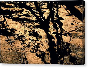 Melted Chocolate Canvas Print by Yulia Kazansky