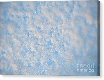 Melting Snow And Water Texture Canvas Print