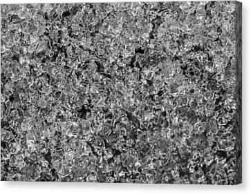 Melting Snow Canvas Print by Chevy Fleet
