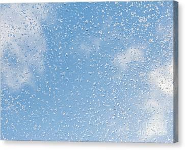 Melting Snow Drops Blue Sky Canvas Print