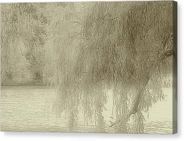 Memories Of Spring Canvas Print