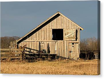 Menard County Shed Canvas Print by Eric Mace