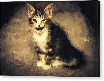 Meow Kitten Painterly Canvas Print by Pati Photography