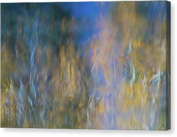Merced River Reflections 14 Canvas Print by Larry Marshall