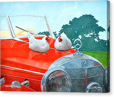 Mercedes Hens... Canvas Print by Will Bullas