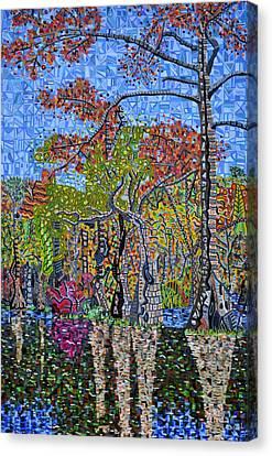Merchants Millpond State Park 1 Canvas Print by Micah Mullen