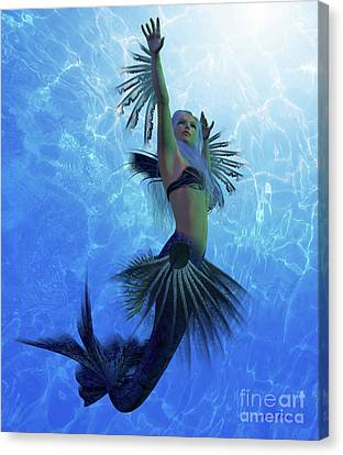 Mermaid Lorelei Canvas Print