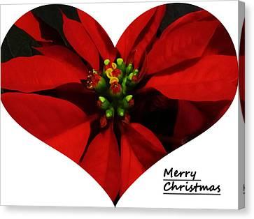 Merry Christmas All Canvas Print