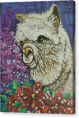 Merry Christmas Alpaca Canvas Print
